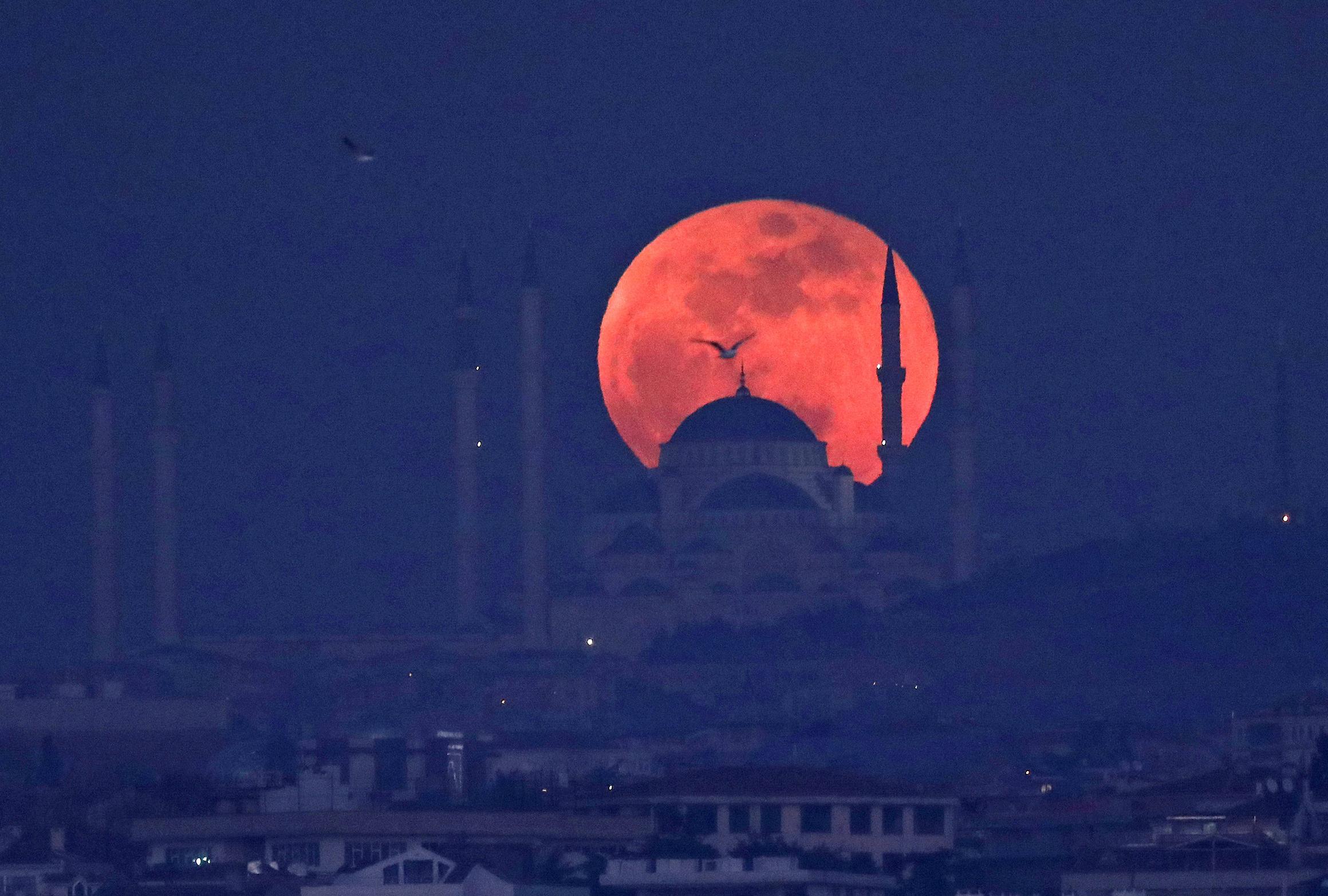 red moon 2019 energy - photo #49