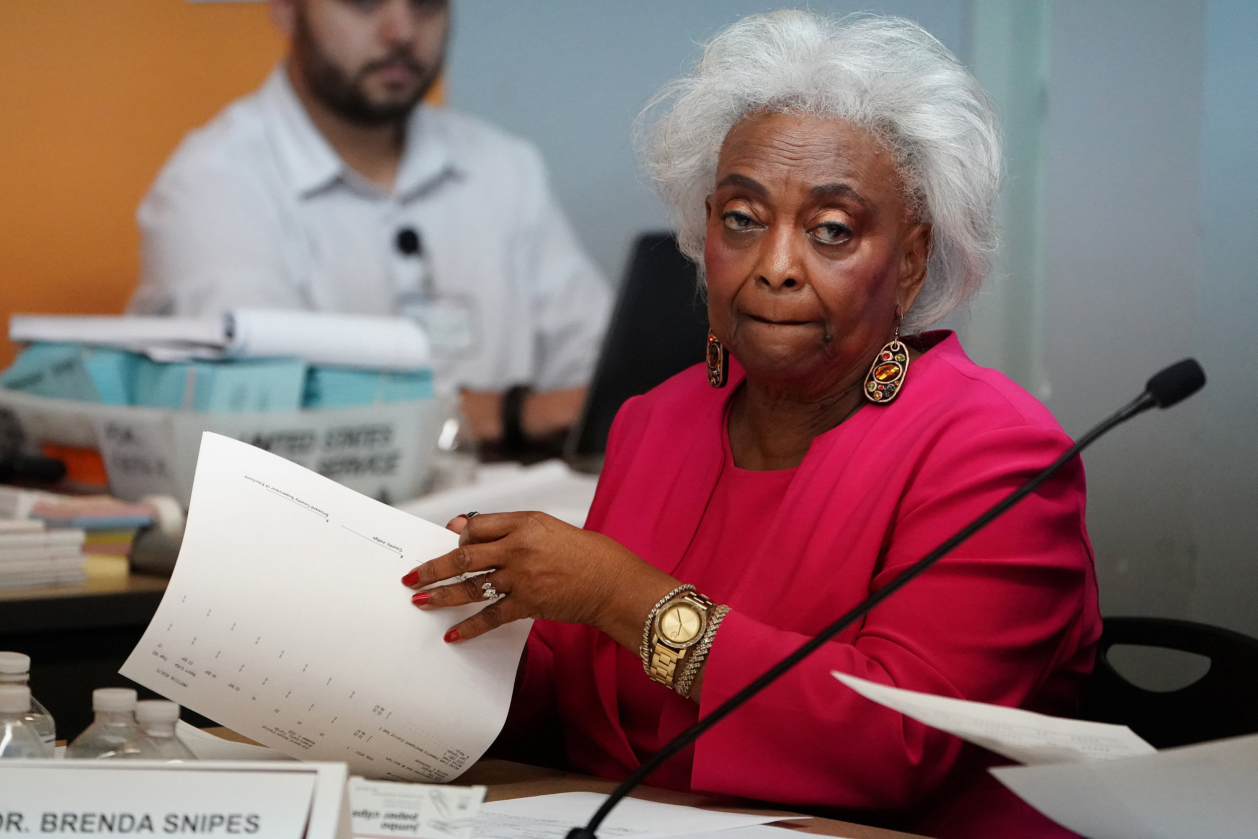 Report Finds Flaws In Broward Special >> How Brenda Snipes And Other Black Election Workers Got Falsely