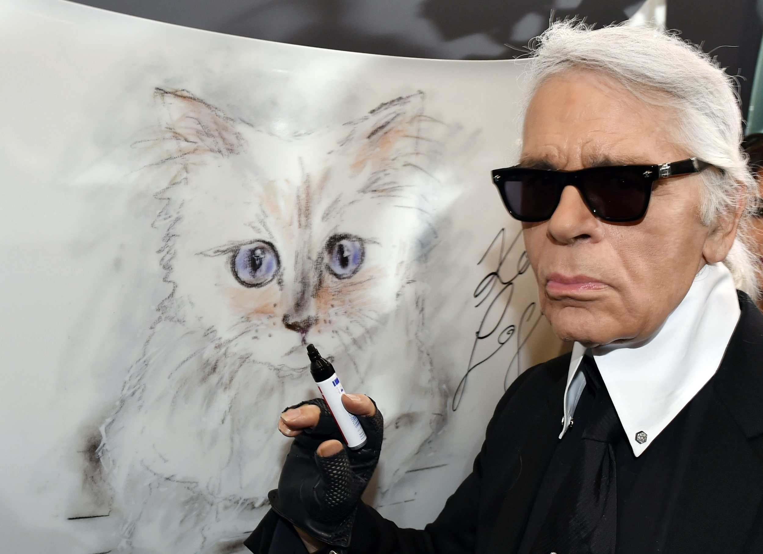 How much of Karl Lagerfeld's $195M fortune will his cat inherit?