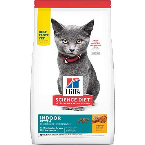 best cat food to test diet