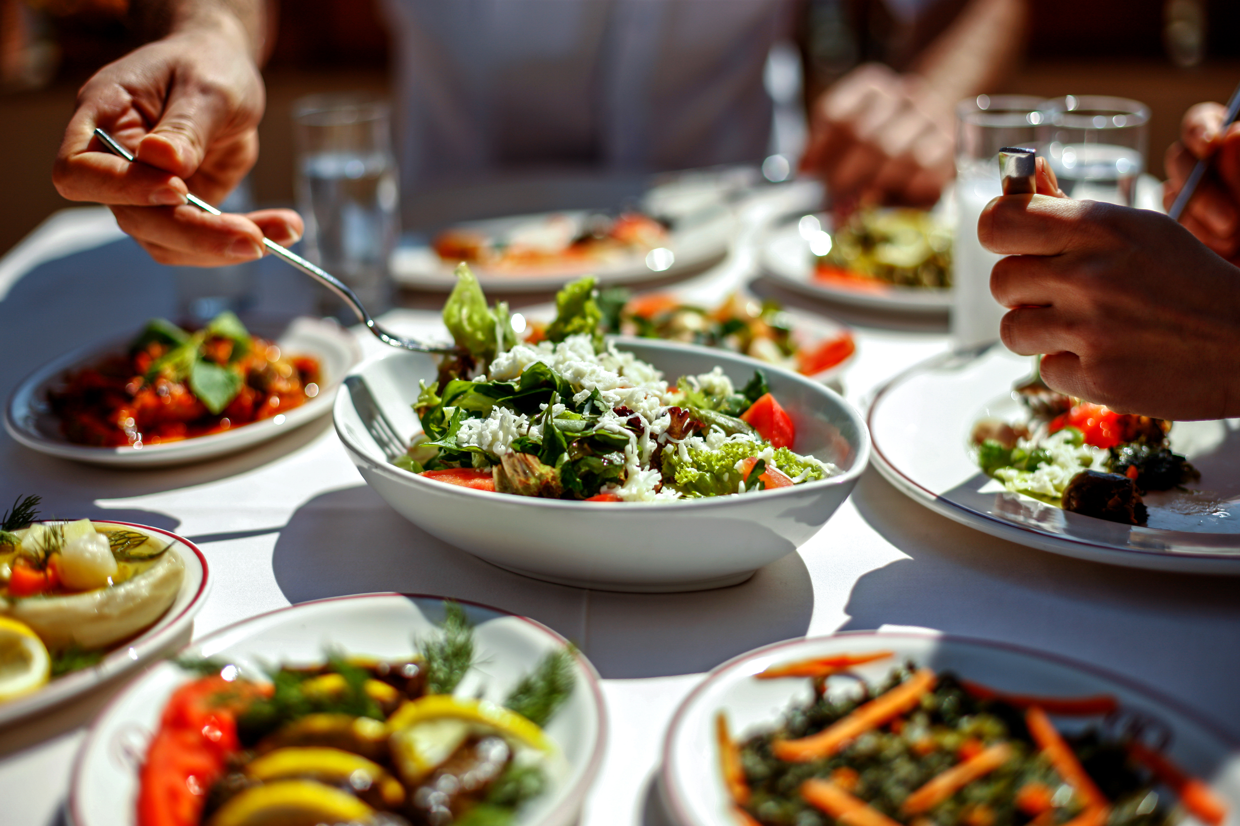 low fat diet reduces cancer