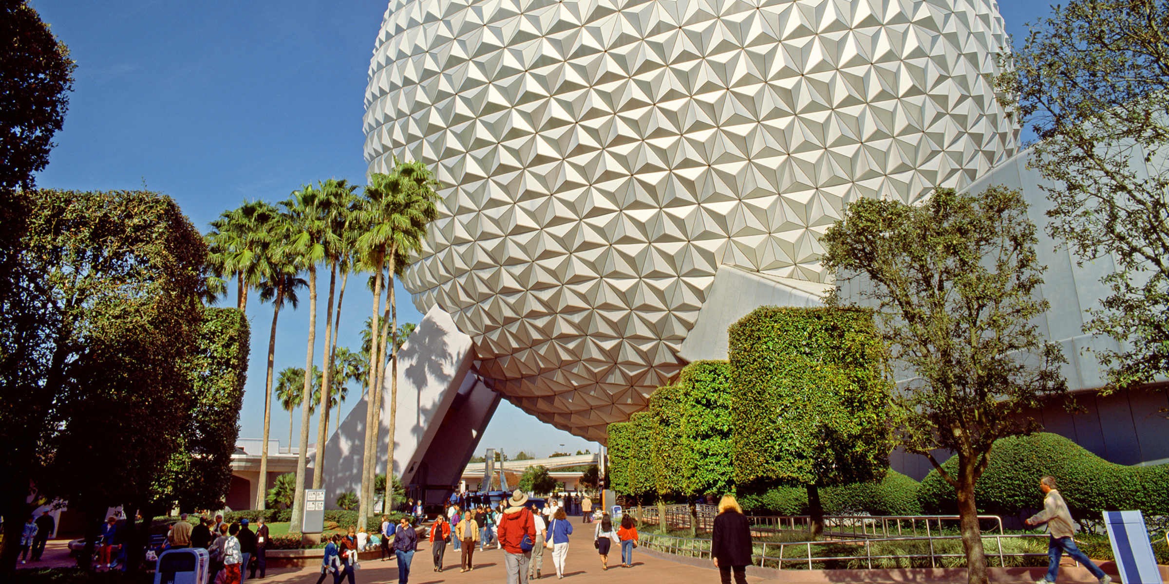 Rabies alert issued for part of Walt Disney World after feral cat scratches employees