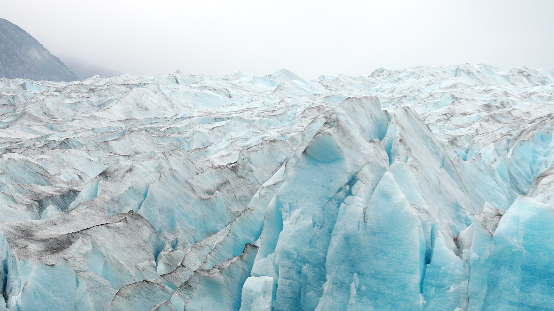 The face of Spencer Glacier has been receding almost a hundred feet each year.  The surface of the ice loses 12 inches of height every day.