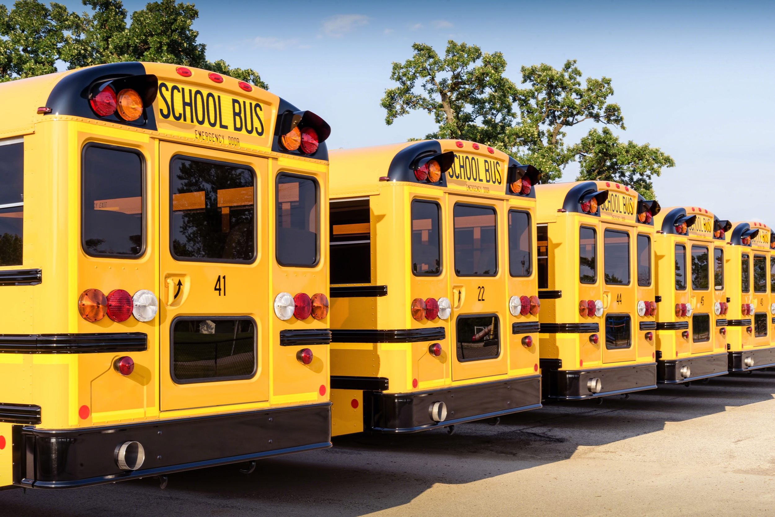 White girls, ages 10 and 11, accused of 'racist' assault on black girl on N.Y. school bus