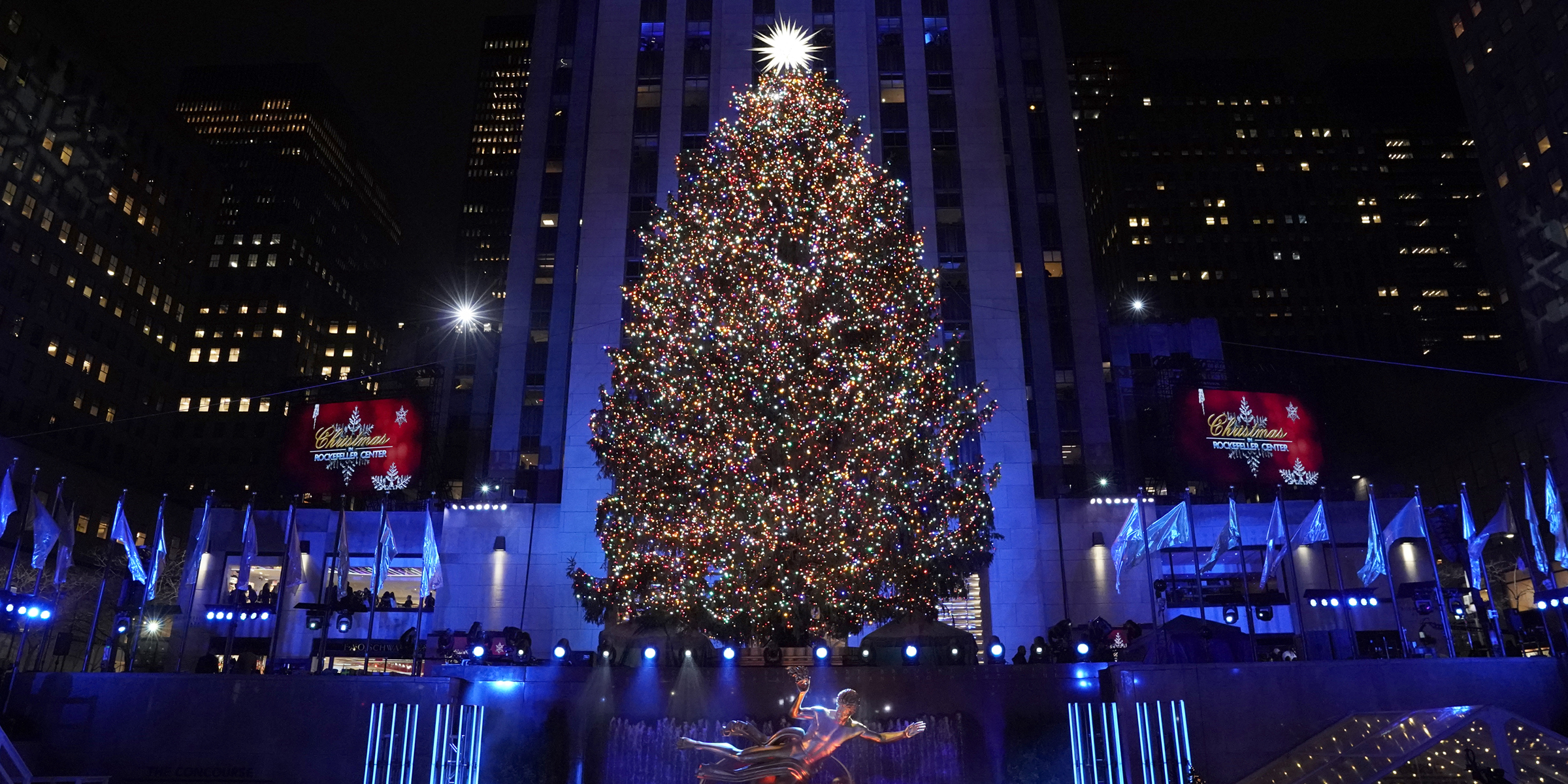 Rockefeller Plaza Christmas Tree 2020 The 2019 Rockefeller Center Christmas tree has been chosen! Here's