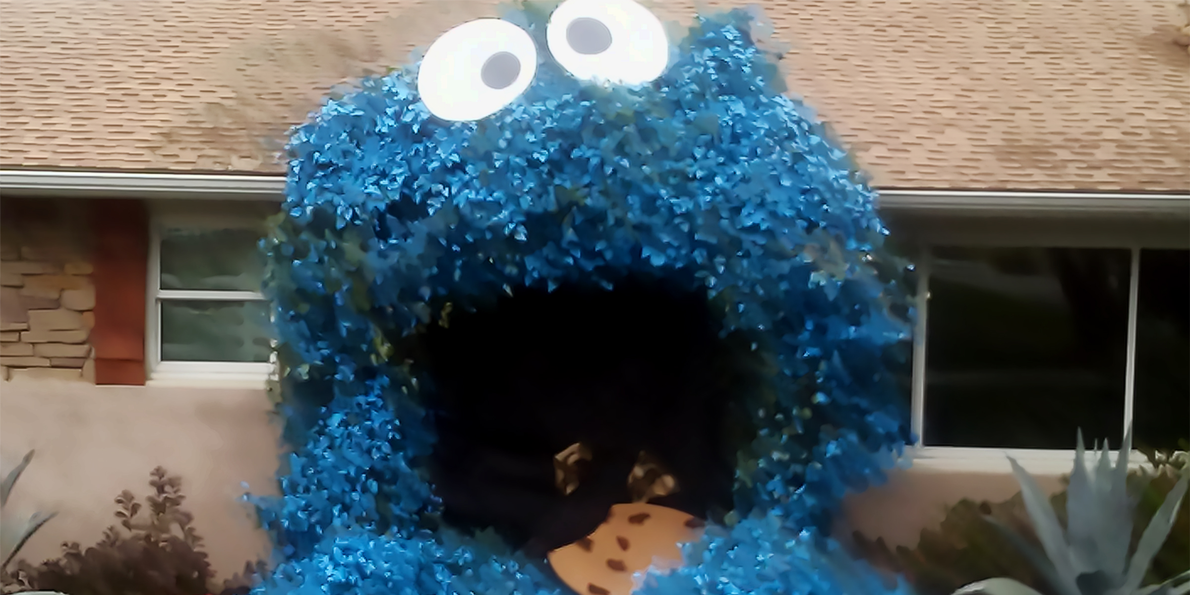 This House Is Dressed As Cookie Monster For Halloween