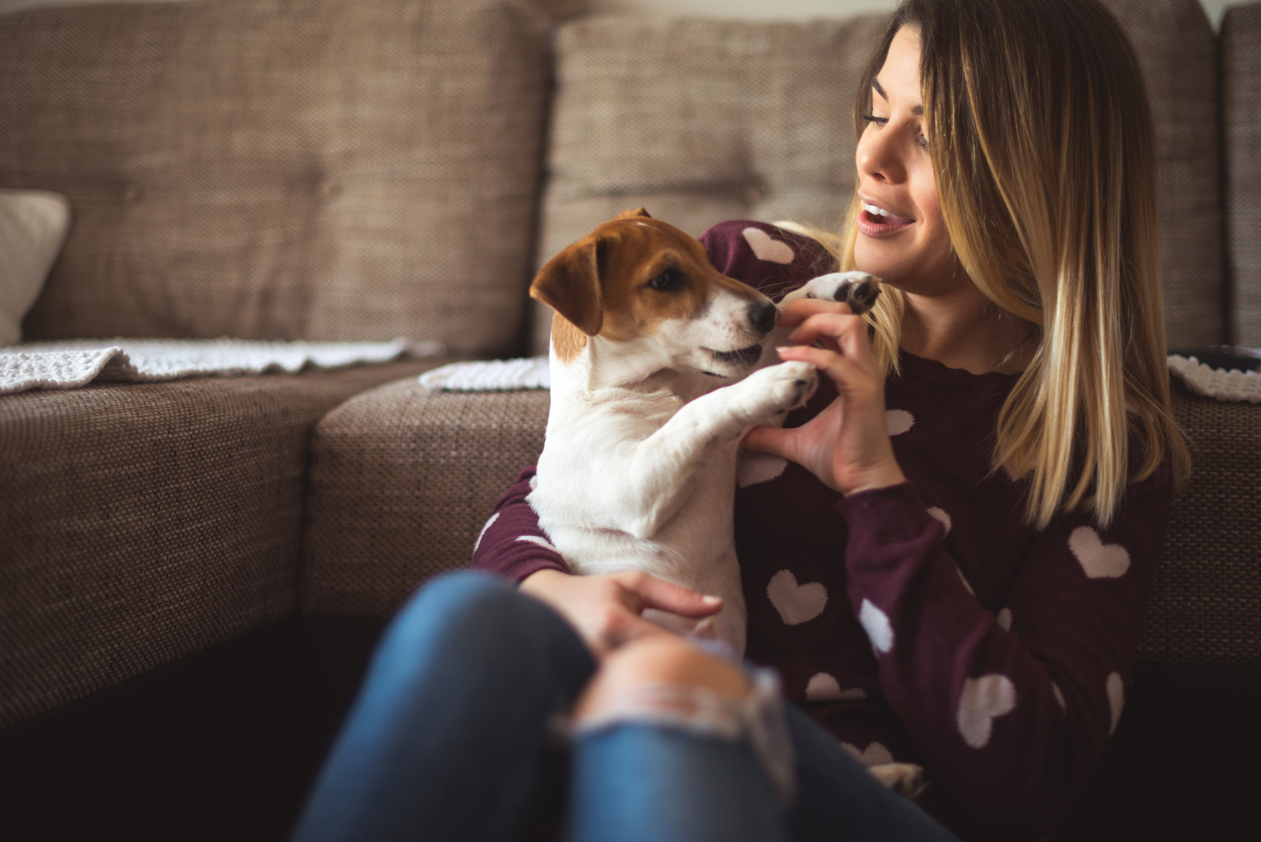 Pawternity' leave: How to make the most of the first week with your new  puppy