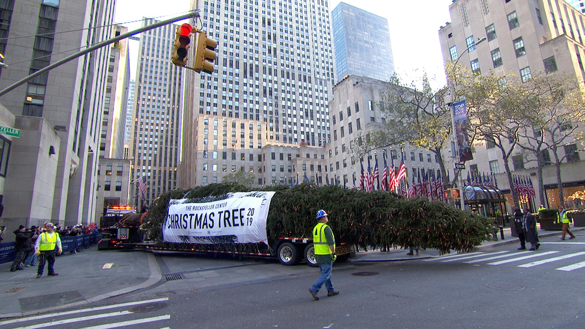 Flipboard: Meet the new 2019 Rockefeller Center Christmas tree