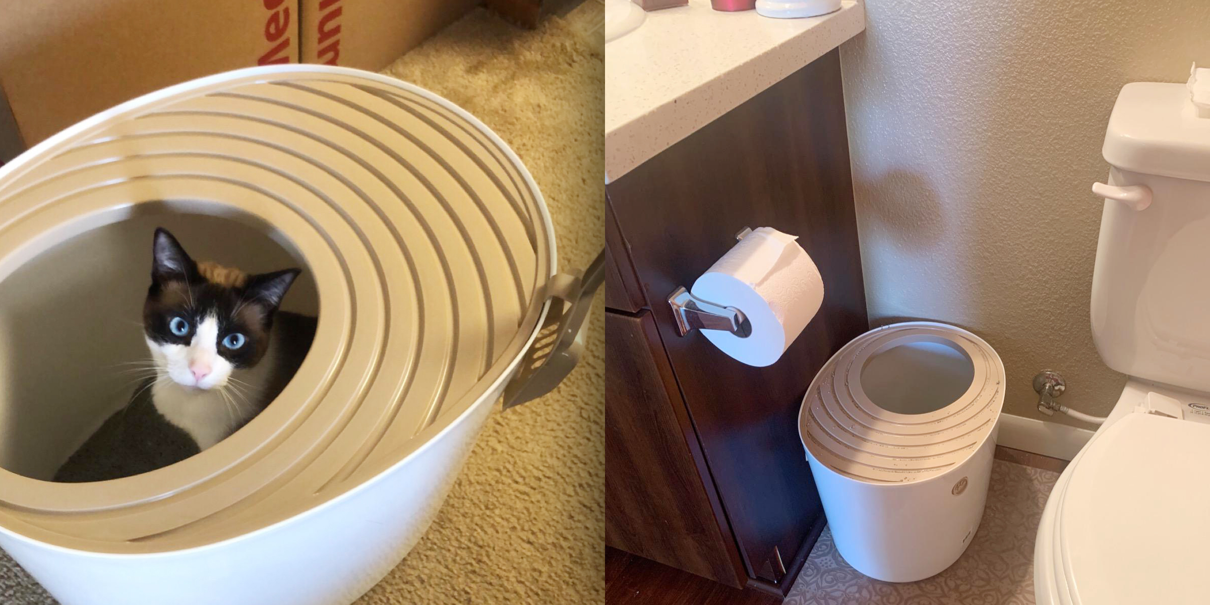 This unique litter box has saved me hours on cleaning my apartment