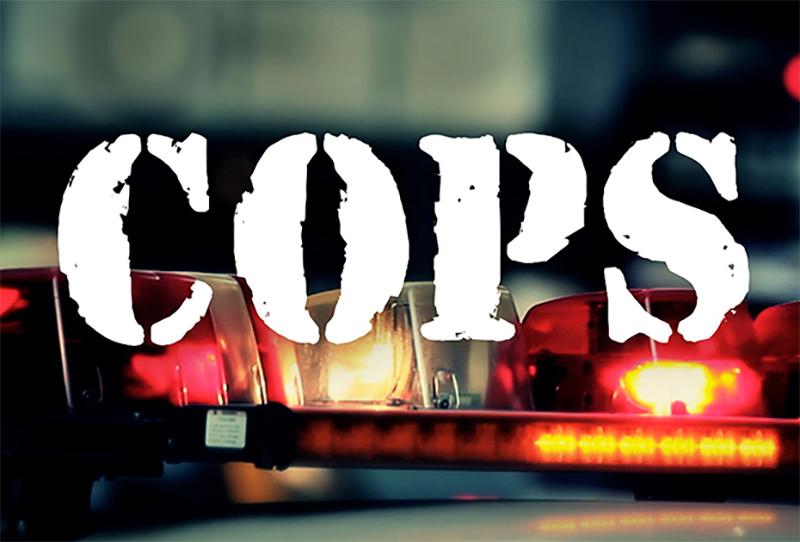 'Cops' is returning to TV on a Fox News-owned streaming service