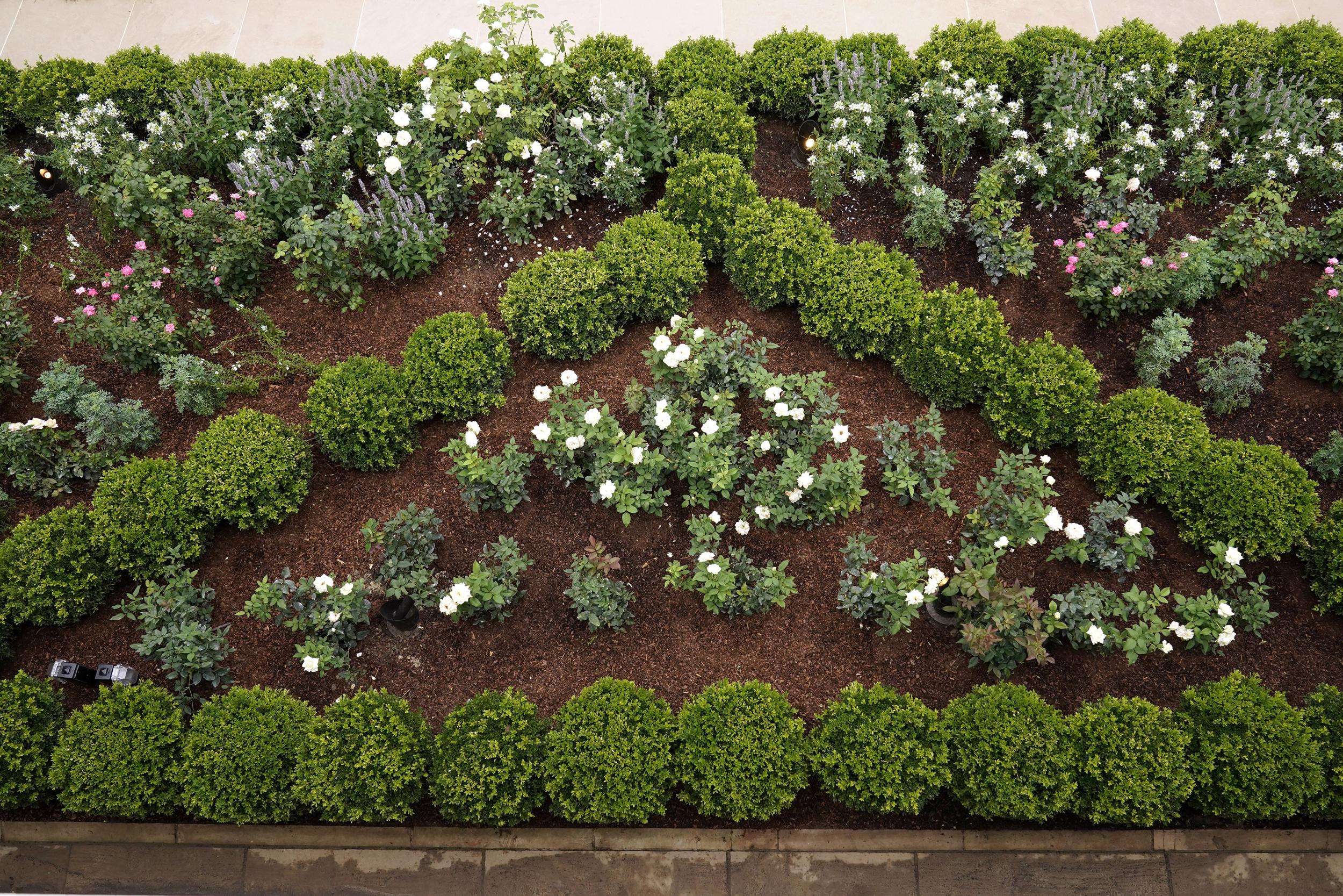 Spruced Up White House Rose Garden Set For Melania Trump Speech