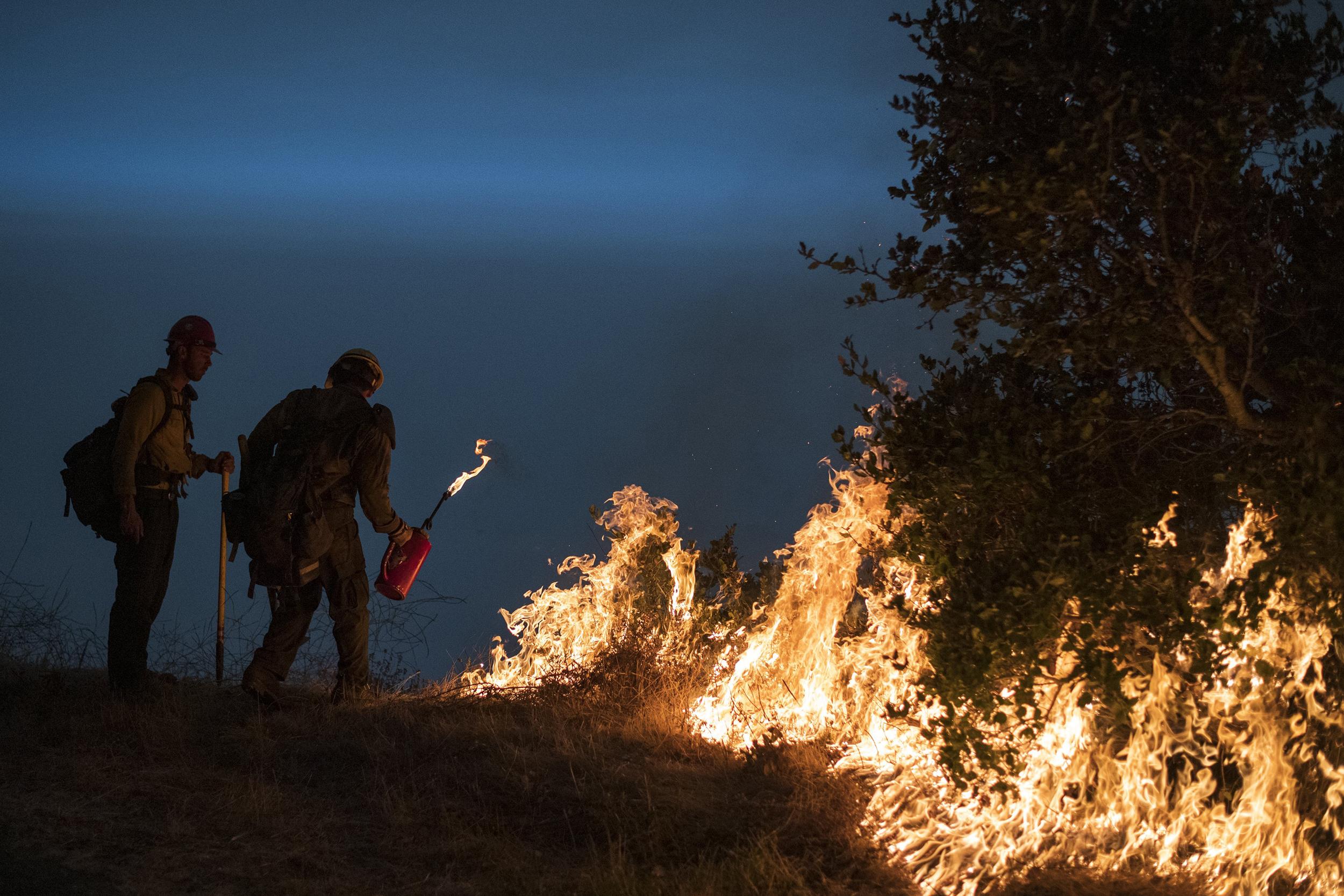 Image: Dolan Fire (Nic Coury / AP)