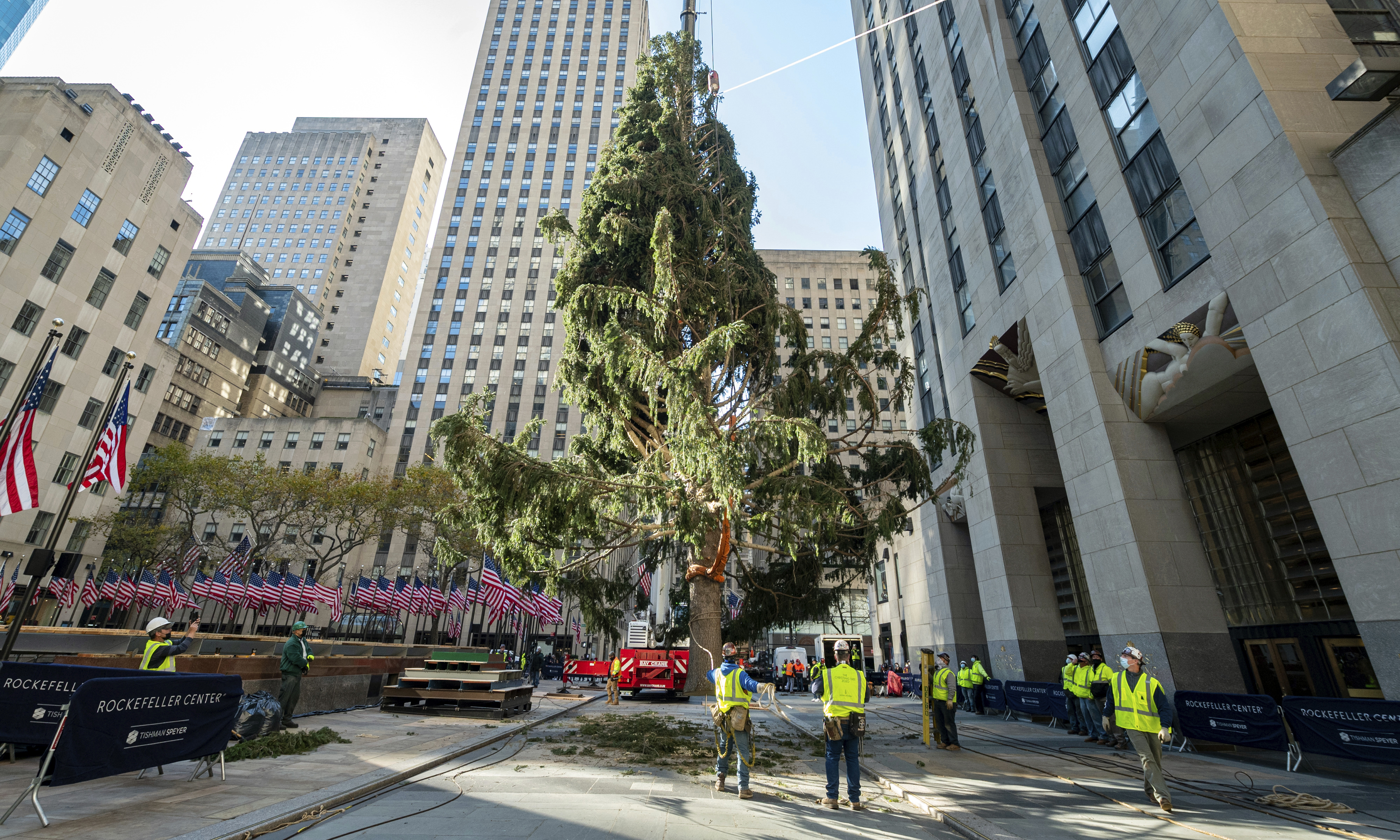 Christmas Trees In Queens, Ny 2021 Christmas Trees Put On Display In U S Cities Draw Mockery And Comparisons To 2020