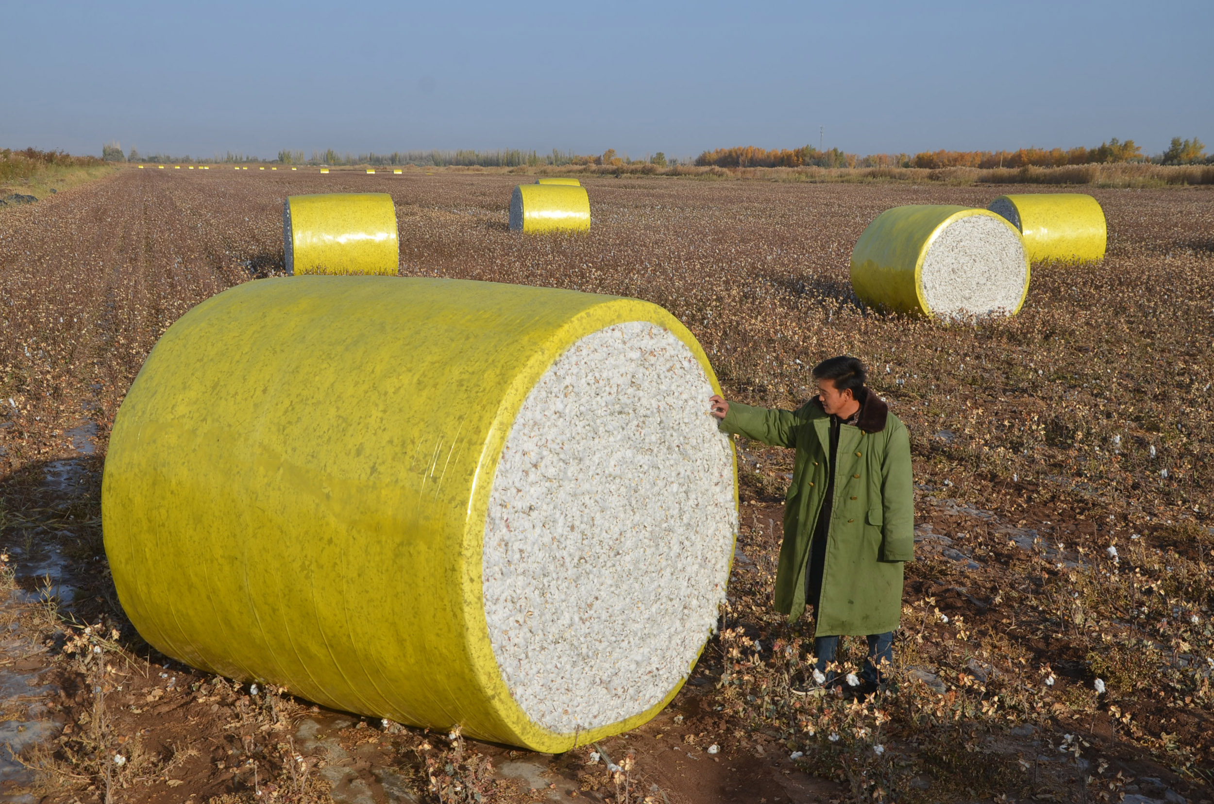 U.S.-to-block-cotton-from-Chinese-region-over-Uighur-crackdown