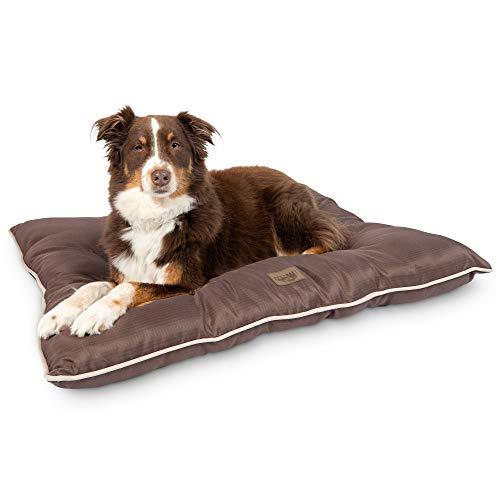 The 7 Best Outdoor Dog Beds Of 2021, Waterproof Outdoor Dog Bed Canada