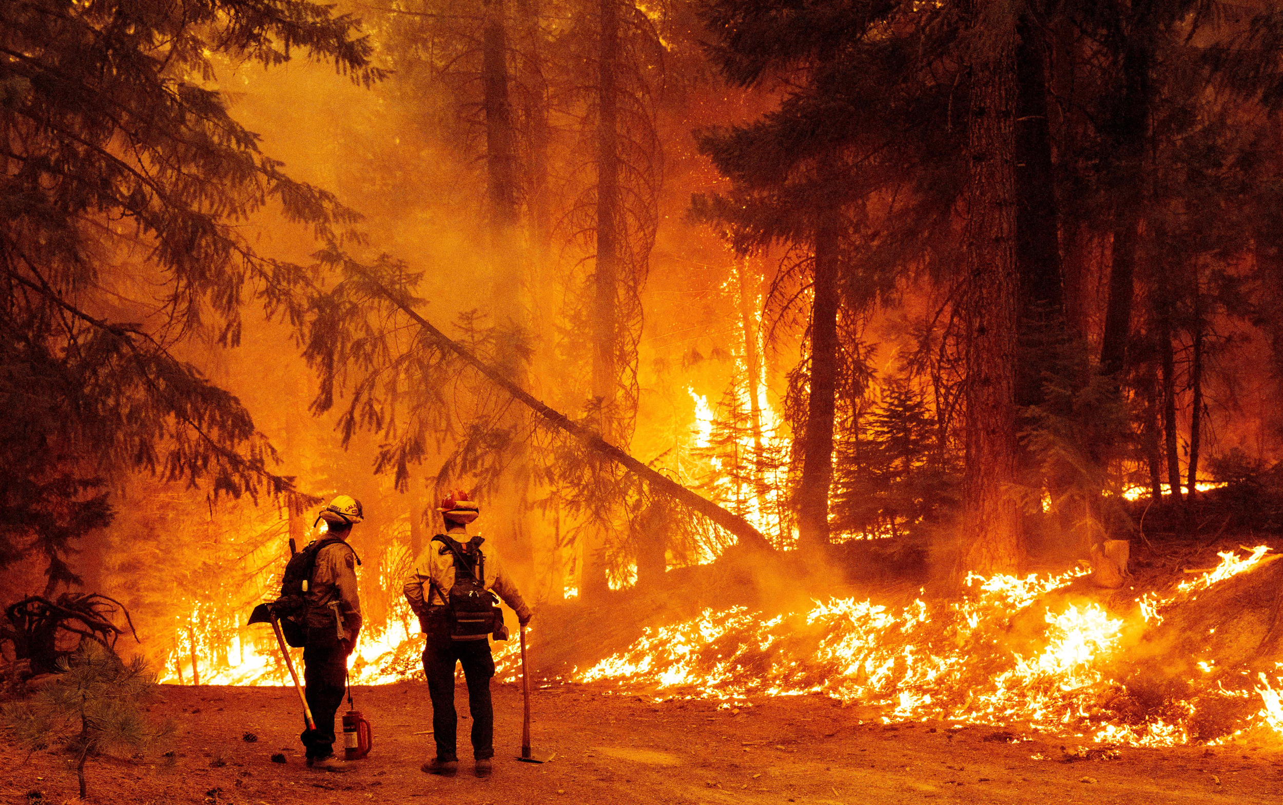 Homes destroyed in California as wildfires continue to rage
