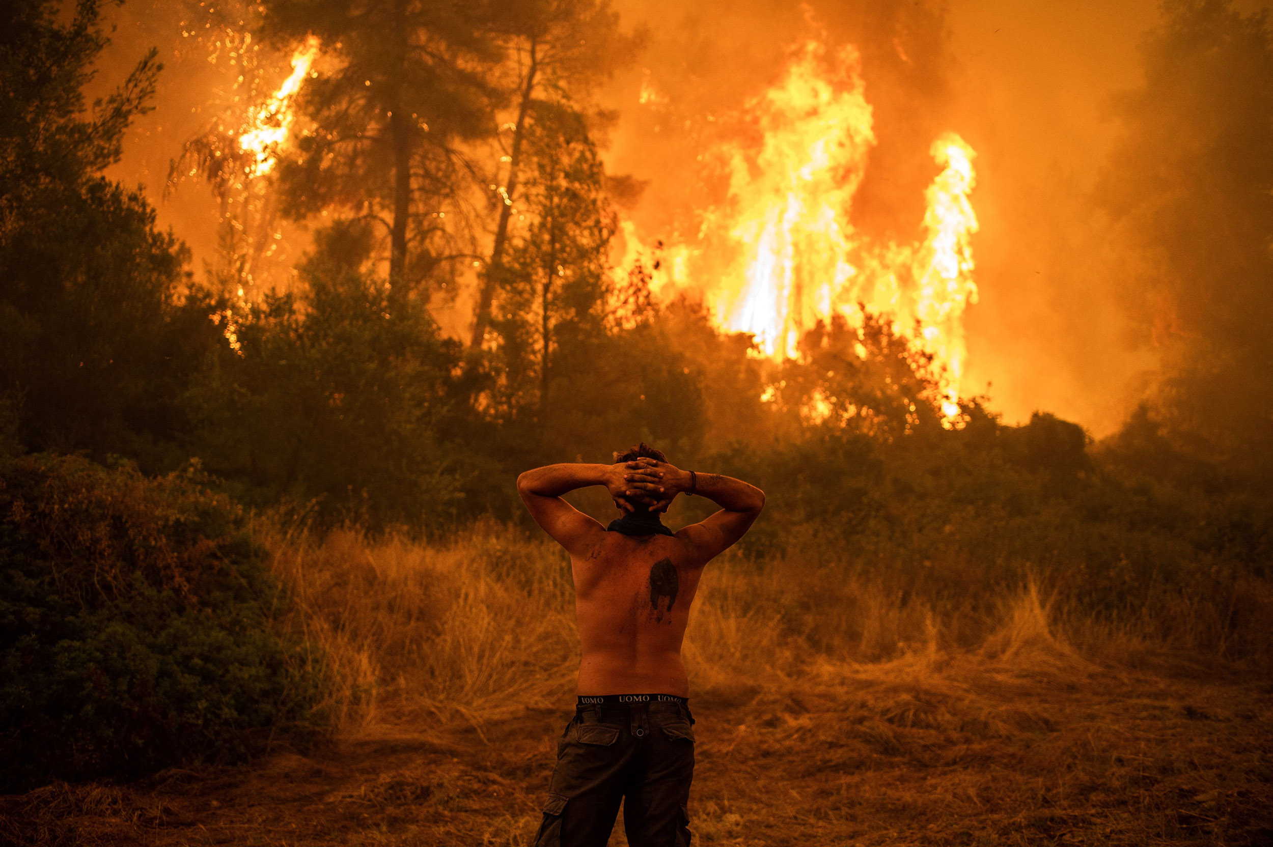 Devastating Greek wildfires are 'harsh reality of climate change,' experts warn