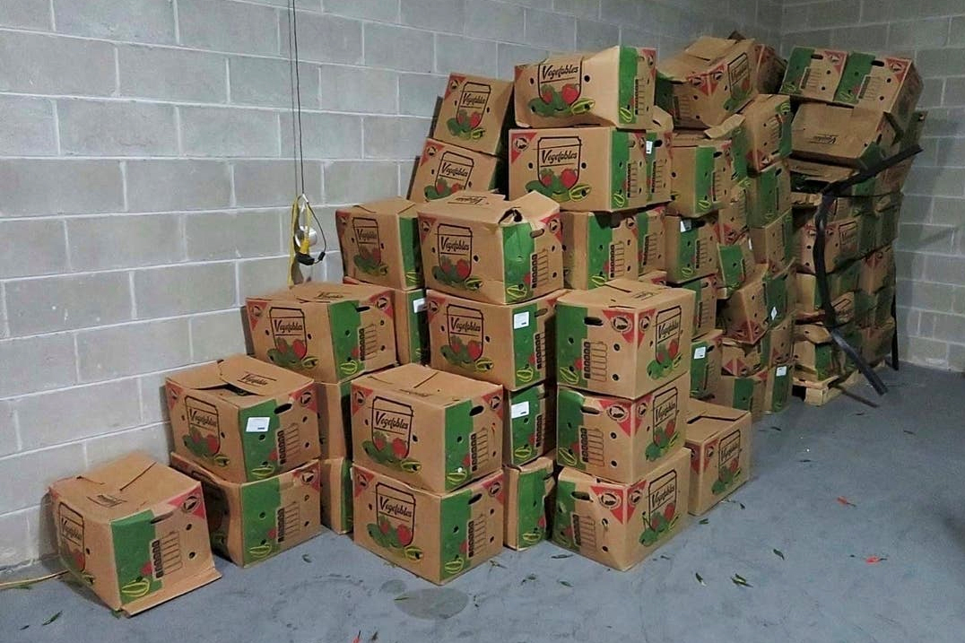 Pennsylvania produce importer sentenced for smuggling cocaine in boxes of peppers