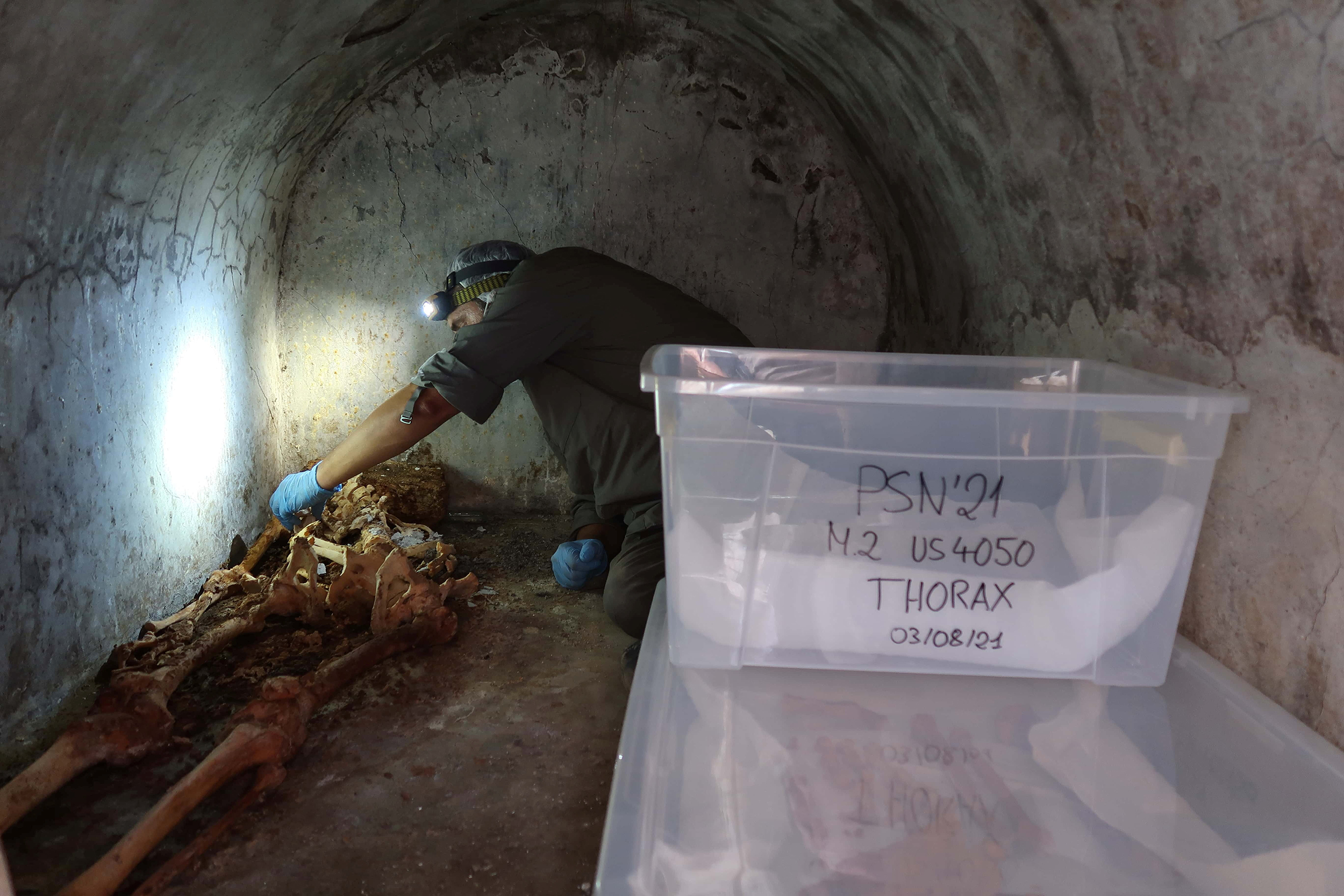 New skeleton found in Pompeii, proves Greek used in ancient city