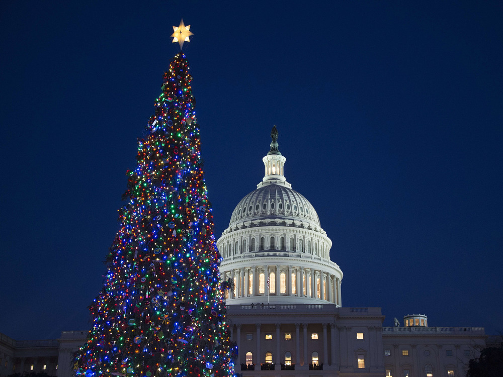 Christmas Tree Lights Up The Night At U.S. Capitol