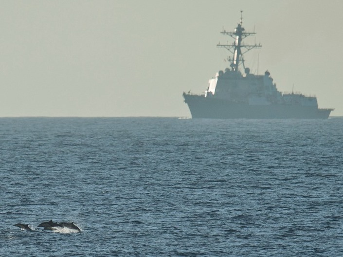 Image: Dolphins and destroyer