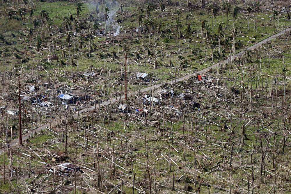 An aerial view shows a coconut plantation and houses destroyed by Typhoon Haiyan in Tolosa, Leyte, in central Philippines in this Nov. 19 file photo. The destruction will squeeze supplies, while demand for coconut products rises.