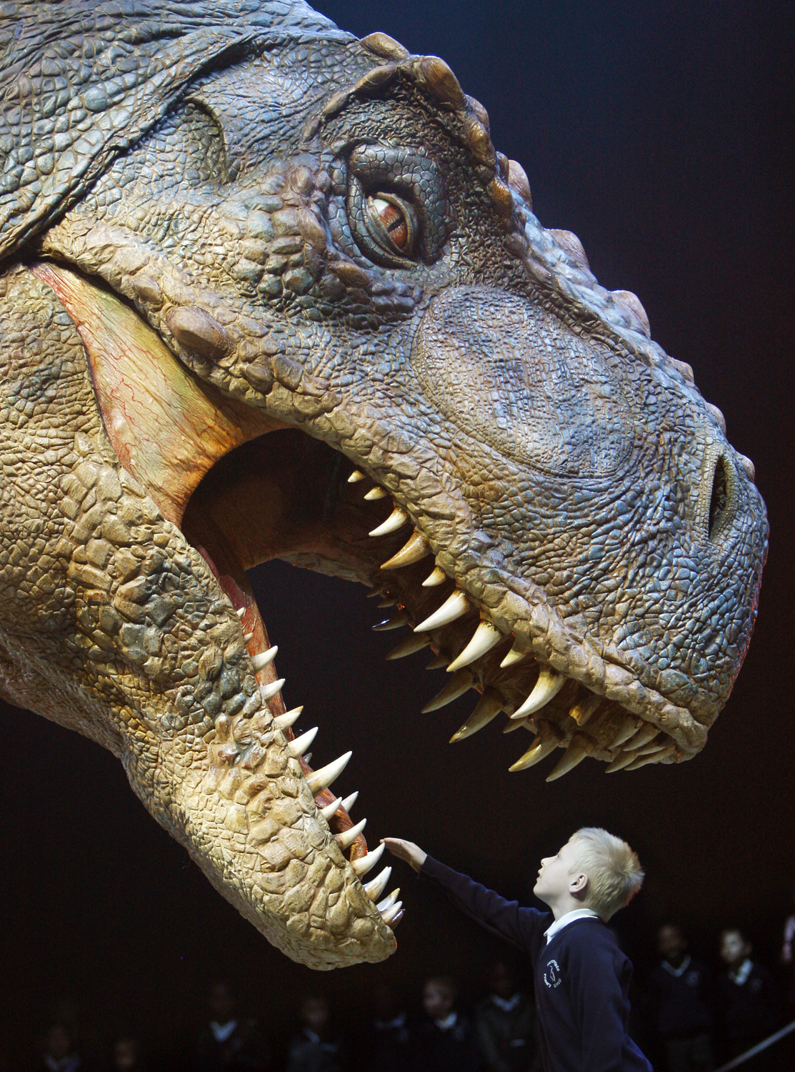 T-rex Burger Now Extinct From Canadian Wendy U0026 39 S