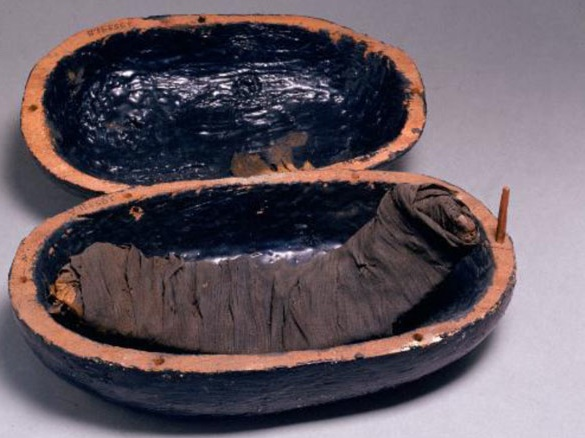 Bandaged beef ribs from the tomb of Yuya and Tjuiu, from the 13th century B.C.