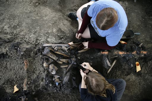 Laura Tewksbury, top, and Karrie Howard excavate more than 42,000-year-old bison fossils with dental picks at the La Brea Tar Pits on Wednesday, Oct. ...