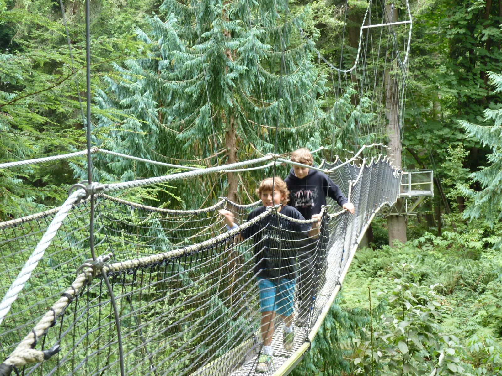 Greenheart Canopy Walkwa