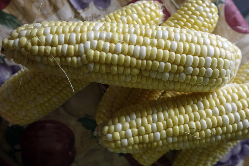 Freshly shucked corn is prepared for sale at the Farmer's Market in Montgomery, Ala., Monday, Sept. 23, 2013. A global fight over fertilizer may end u...