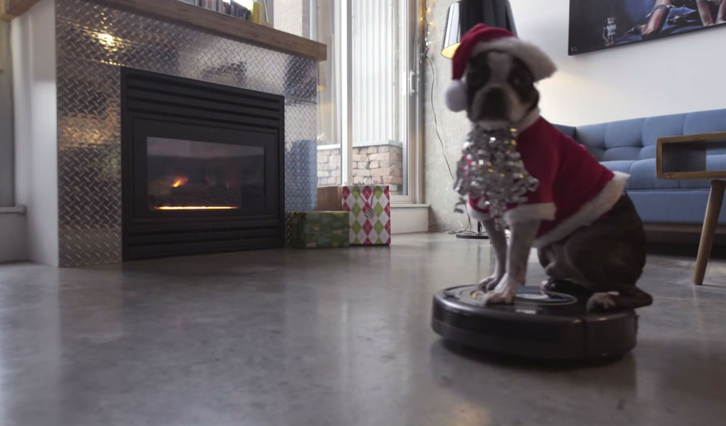 Dog on a Roomba wears a Santa hat for the holidays - TODAY.com