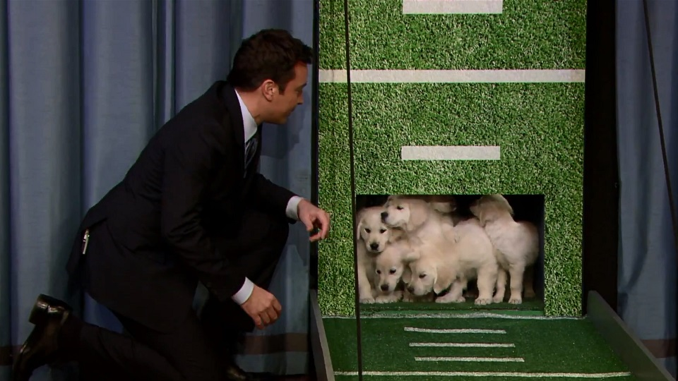 Image: Jimmy Fallon and puppies.
