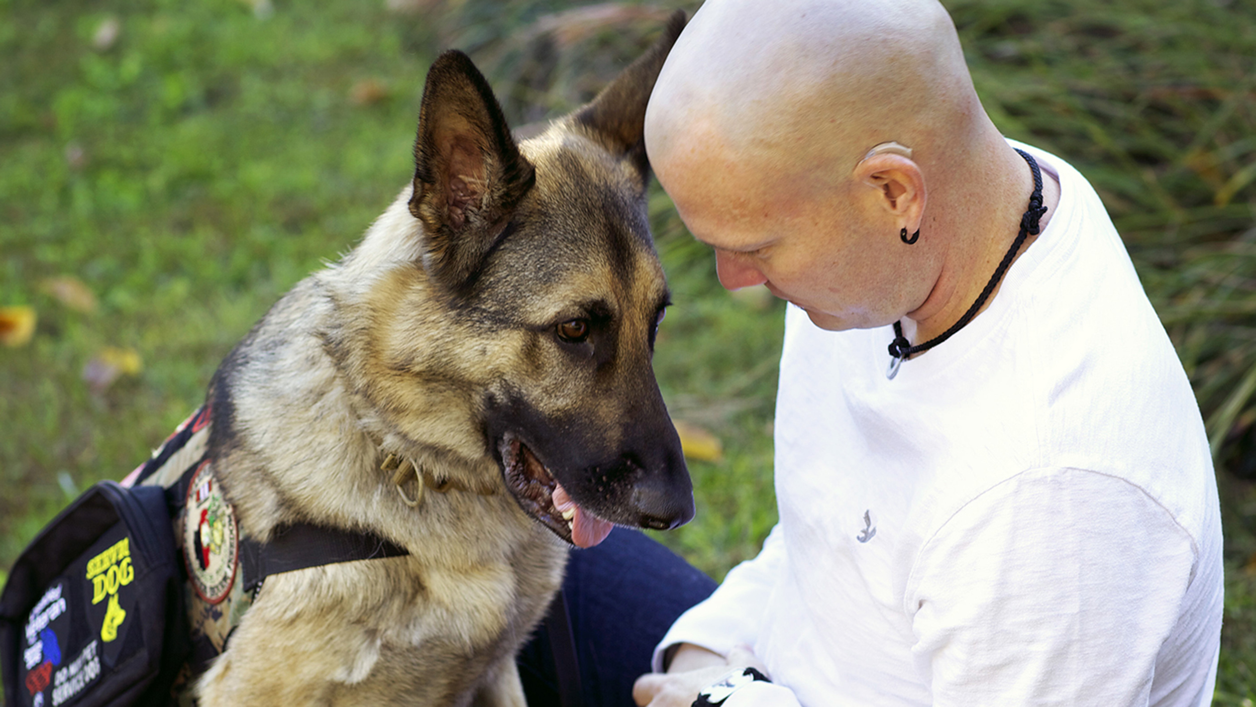 service dogs much more than a helpers However, the actuality of such a step is far more complex and much harder than it appears at first glance obviously each child presents a separate set of challenges, as does each family situation, dog, disability, etc.