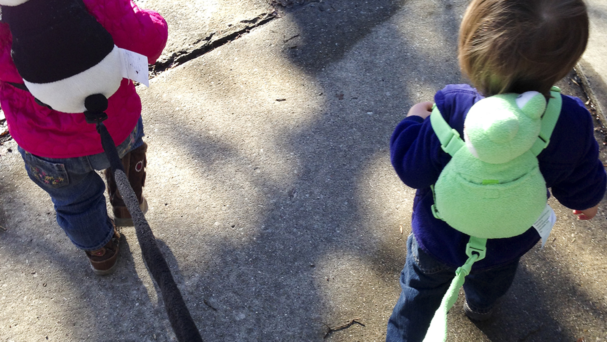 Child Leashes Are They Helpful Or Humiliating