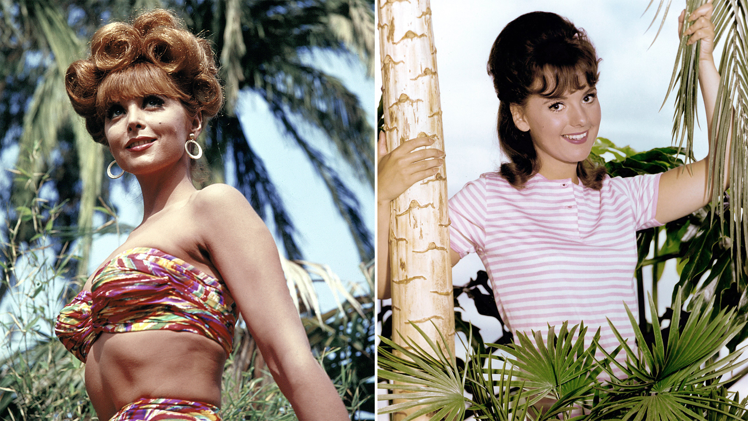 Ginger Or Mary Ann Gilligan Fans Still Ponder Question