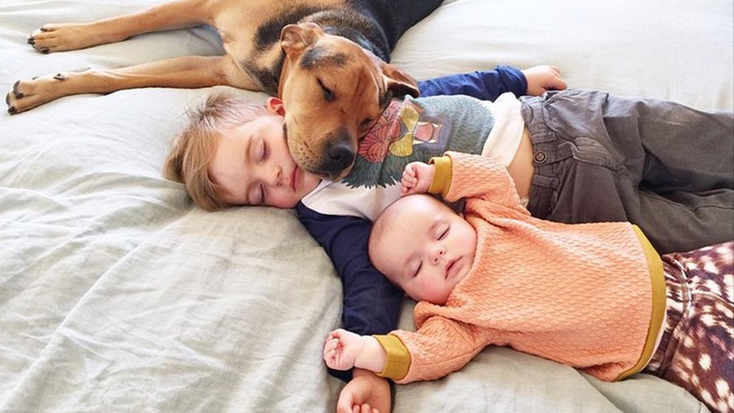 Спящий сын и мать фото 10 фотография