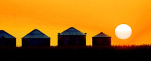 GRAIN BINS SUNSET