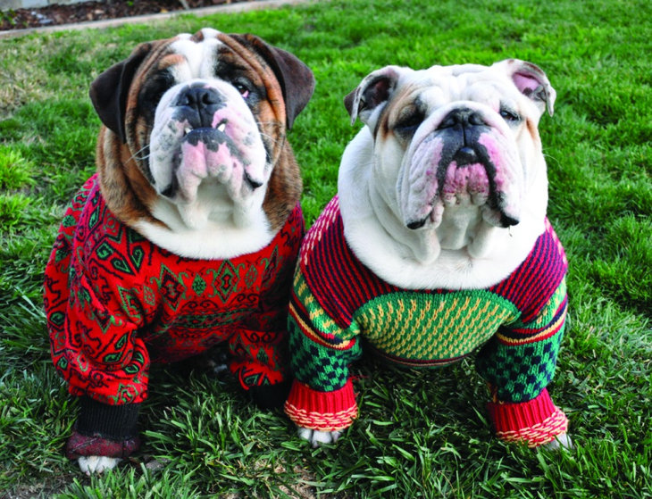 Today is National Ugly Christmas Sweater Day | THE HAPPINESS ZONE