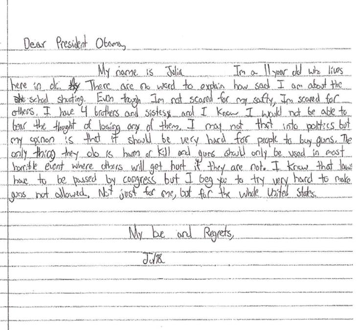 write essay gun violence