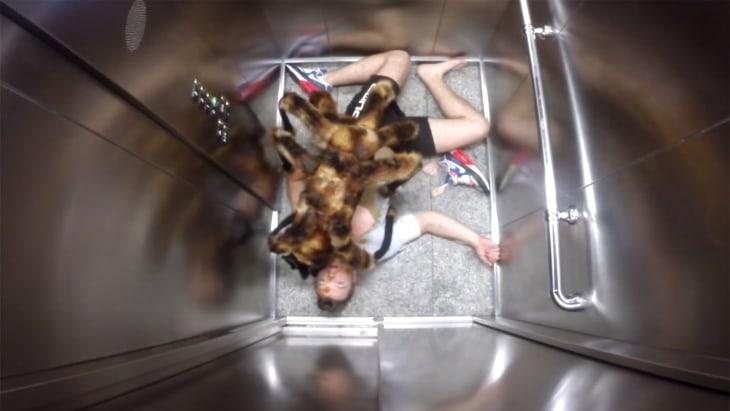 Mutant Spider Dog Devil Baby Youtube Unveils Top 10 Videos Of 2014 Money Today Com