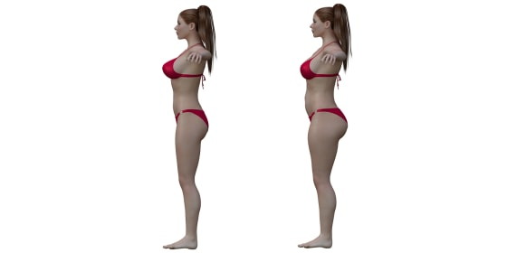 Ideal Female Body The   ideal   female on the left