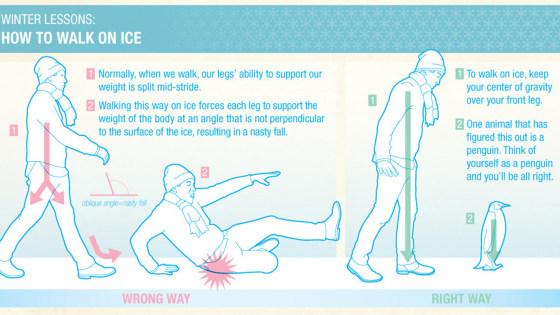 Kuidas jalakäijana libedaga liigelda