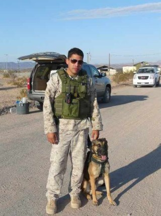 """""""It's like he has always known us,"""" Sandra Diaz says of her fallen son's military dog, Dino."""