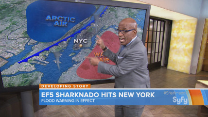 Al Roker in Sharknado 2.