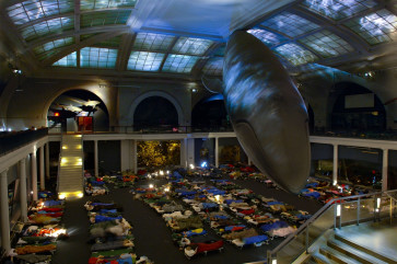 The adult sleepover at the American Museum of Natural History will take place in the Milstein Hall of Ocean Life.