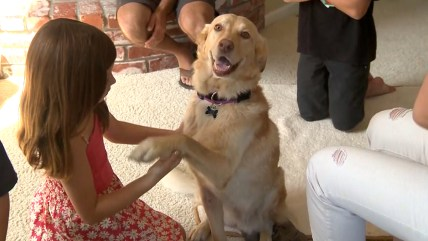 Murphy, who went missing two years ago, is thrilled to be back with her family.