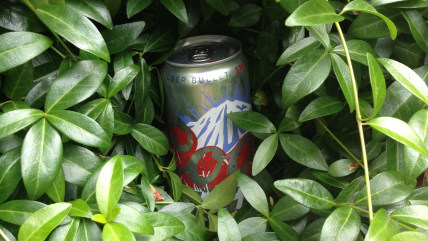 Teens will do whatever it takes to sneak booze into parties...including hiding it in the bushes.