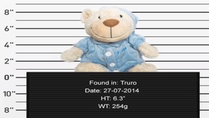 Lost Bear!