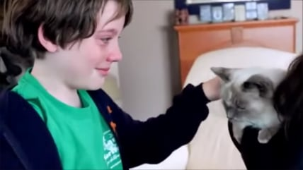 Image: Boy reunites with lost cat